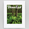 Down East Magazine April 2018 Cover Print - Ferns