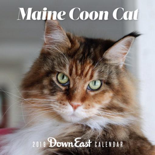 Down East 2019 Maine Coon Cat Calendar