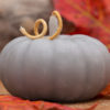 Seapoint Chandlers - Pumpkin Candle - Grey