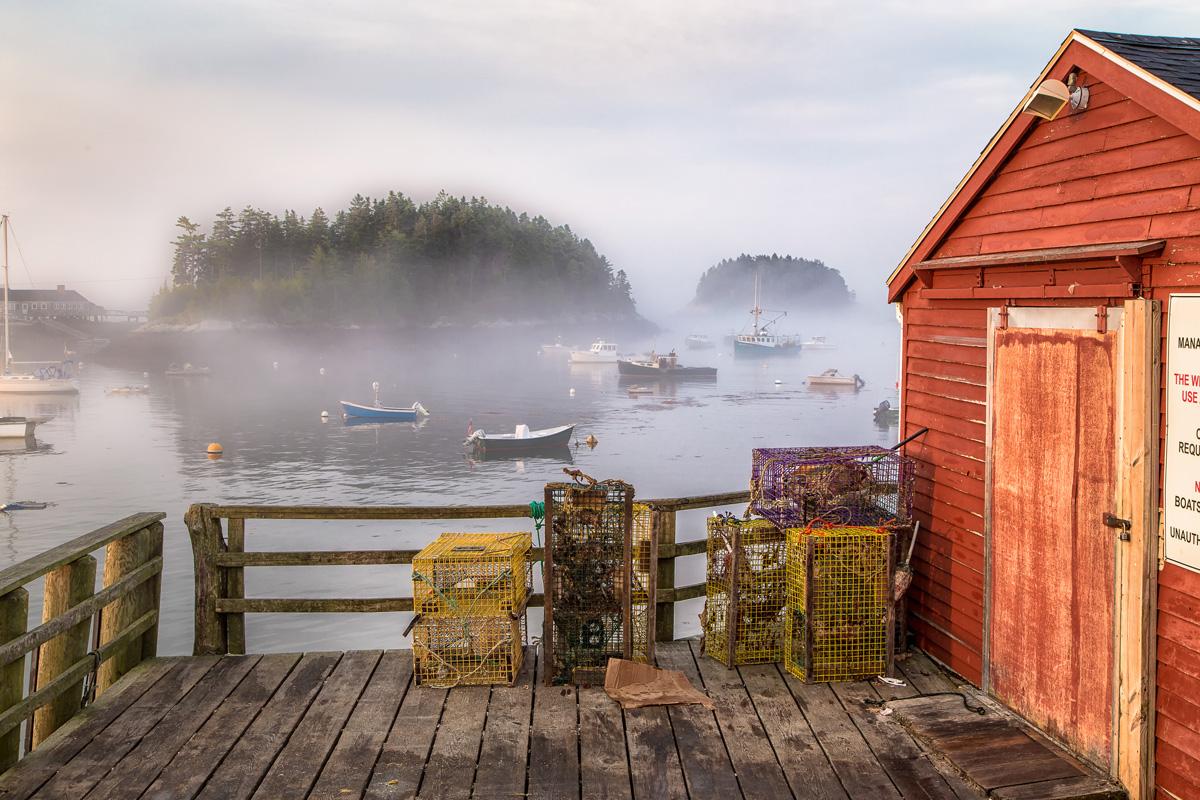 Five Islands Fog