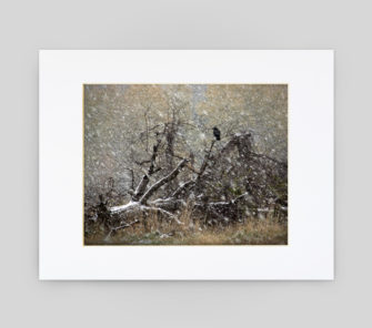 Storm on the Ridge by Mike Czosnek