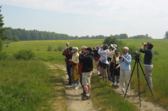 Migratory Songbird Workshop