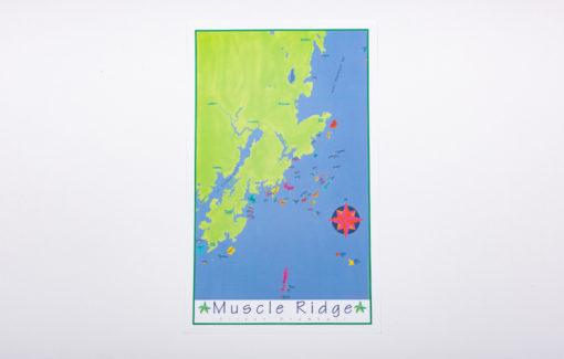 Festive Fish - Chart Poster - Muscle Ridge