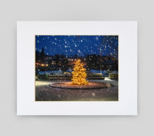 Rockport Christmas Tree Print by Ben Williamson