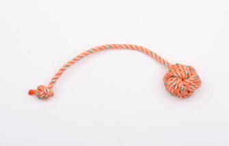 Friendship Lobster Treats - Floating Roap Fetch Toy - Orange