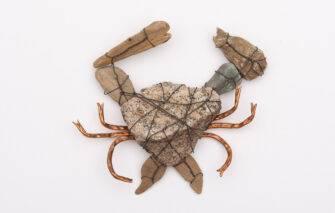 Julia M. Doughty - Ready Crab